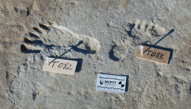 Scientists have found human footprints in the United States that are more than 20 thousand years old
